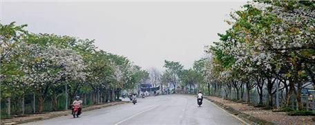 Du lịch Điện Biên - Lễ hội Hoa Ban 2021 (3 ngày 2 đêm)