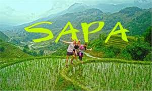 Top 3 tour Sa Pa từ Hà Nội được du khách lựa chọn nhiều nhất