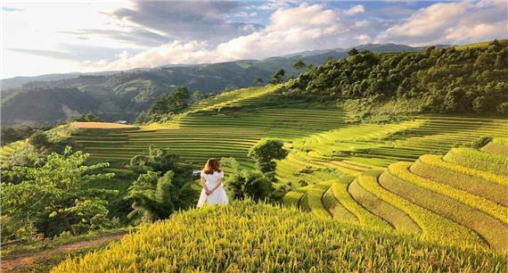 Du lịch Mù Cang Chải - Bay trên mùa vàng 3 ngày 2 đêm